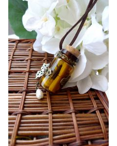 Daisy Butterfly Messenger Bottle Necklace